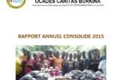 Rapport Annuel Consolidé (RAC) 2015 de l'OCADES