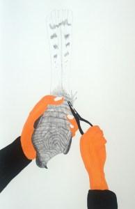 PHELAN, GARRETT_Ringed drawing no5_2008