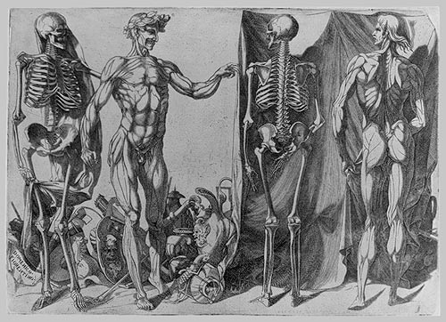 Domenico del Barbiere - Two Flayed Men and Skeletons, ca. 1540–1545