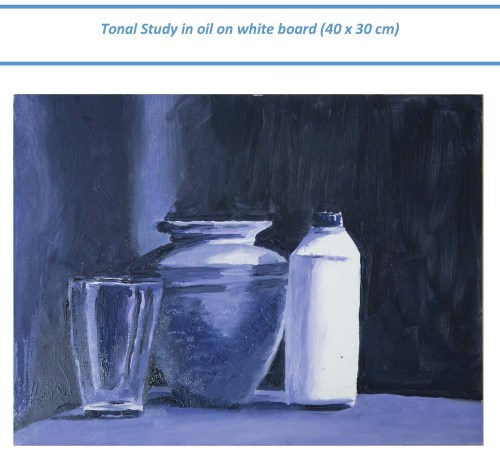 Stefan513593 - Project 3 - Exercise 1 -- tonal value study