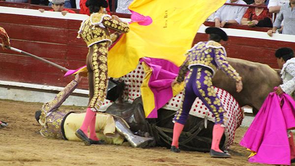 revive corridas de toros