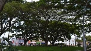 El parque principal