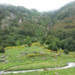 Национальный природный заповедник «Орлю»
