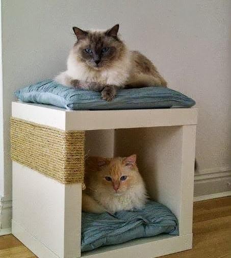 cat-snug-scratch-post-776980