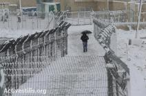 Jan 10 2013 Palestine Shufat checkpoint in the snow - Photo by ActiveStills