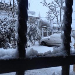 snowwb-12