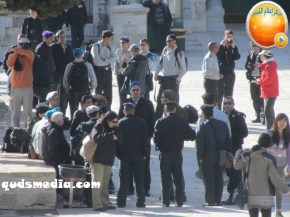 Febr 7 2013 Settlers and armed forces desecrate al-Aqsa Mosque - Photo by QudsMedia 11