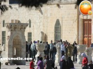 Febr 7 2013 Settlers and armed forces desecrate al-Aqsa Mosque - Photo by QudsMedia 38