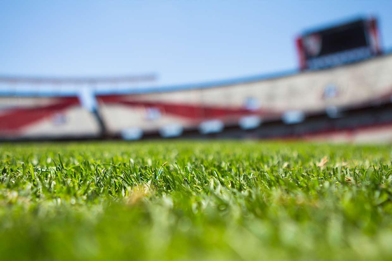 Football DFS