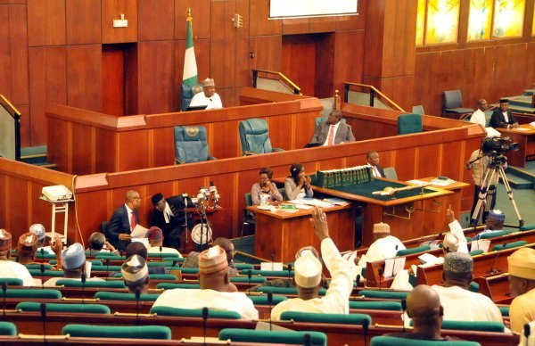 Nigerian lawmakers during a plenary (Premium Times)