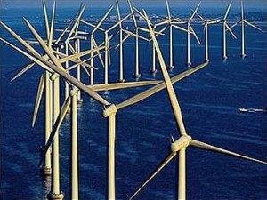 Figure 4: Wind farm