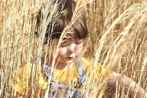 child-in-wheat-field.jpg