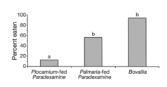 Fig 5: Graph shows the percent of P. fissicauda eaten by fish based on diet. Another similar amphipod is shown on the far right, this was included to rule out shape and structure of amphipods playing a role is being eaten.