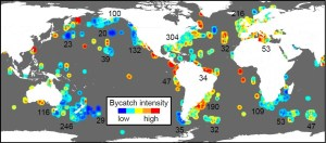 Figure 2: Cumulative bycatch intensity for the three groups of animals and gear types across the globe. Numbers represent the number of data records.