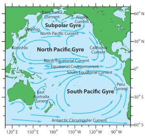 Oceanic gyres are convergence zones where debris floating in surface waters can accumulate. This study focused on the eastern part of the North Pacific Gyre.