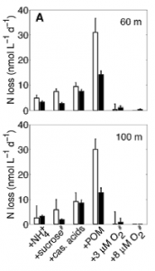 Fig 3. Measured nitrogen loss from water samples taken from the north east Pacific after addition of food sources with varying C:N ratio. Open bars represent loss from denitrification and solid bars represent losses from anammox. Low concentrations of oxygen are shown to inhibit denitrification to a greater extent than anammox.