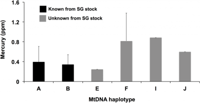 Figure 3.Comparing mercury levels of MSC certified fish across haplotypes.