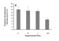 Fig 6: This plot shows the aboveground biomass of seagrass by treatment. C = control, N = nutrient addition, J = jellyfish addition, J+N = jellyfish and nutrient addition.