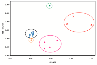 Figure 3: Researchers measured concentrations of certain biomarkers compounds in each samples and plotted the ratios of these compounds in order to group similar samples together. All of the tar ball samples were similar to each other (enclosed in the black circle). The most similar source crudes were both from Bombay High. Source: Suneel et al.