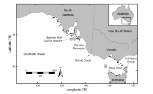 Fig. 3: This map shows the survey area located on the southern coast of Australia. Dots represent sampling sites.