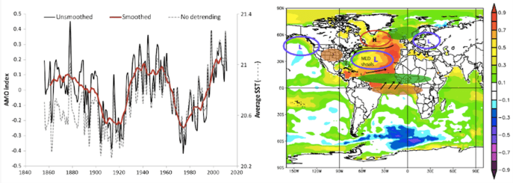 Figure 2. AMO index (left) and climatic representation of the positive AMO (right). Colored map represents SST anomaly correlations with the AMO index, brown shaded eclipse indicates drier regions, green shaded eclipse indicates wetter regions, wind anomalies are shown by black arrows, and letters H and L indicate high and low pressure centers respectively.