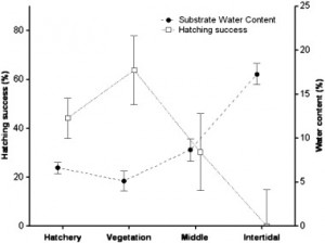 Fig 5: This graph shows the relationship between hatching success and nest sand water content based on the hatchery site and the 3 field zones. As sand water content increases, hatching success decreases.