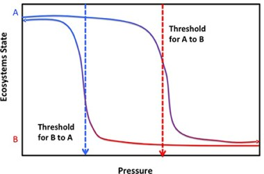 Figure 2. Red indicates higher pressure while blue indicates lower pressure. For an ecosystem undergoes increased pressure, the state drops from A to B following the pathway on the right. If the pressure decreases afterwards, the state of ecosystem goes back to A following the pathway on the left. At a certain pressure as indicated by either of the dashed arrows, ecosystem is at a higher state on the right pathway than the other. Therefore if the ecosystem needs to get back to the same state as before pressure changes occurred, lower pressure is required in reaching the state.