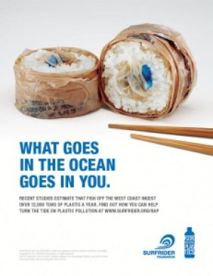 You are what you eat, right? Just hope that isn't plastic... Graphic Source: http://www.surfrider.org/coastal-blog/entry/new-rise-above-plastics-print-psas-from-pollinate