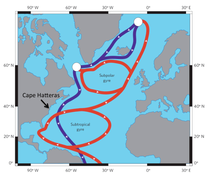 Figure 2. Subpolar and subtropical gyres in the North Atlantic. Arrow show approximate location of Cape Hatteras, North Carolina where the two circulation systems are split based on sea level variability (de Boer, 2010).