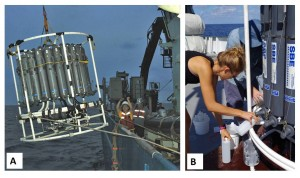 Figure 2: A) CTD package being deployed off the side of a research vessel (image from oceanexplorer.noaa.gov) B) scientist collecting water samples out of a Niskin bottle on the CTD (Image from www.schmidtocean.org).