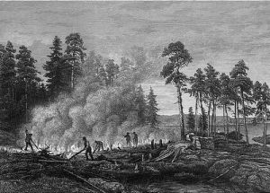 Figure 2: Drawing of early European farmers applying a slash and burn practice to make croplands.