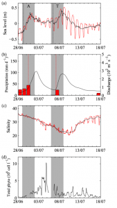 Figure 2: Plots showing the physical effects of the first two storms in June-July and the changes in the plankton population. In all plots the gray vertical bars indicate the duration of the storms. Panel (a) shows the sea level rise associated with the storm surge. (b) Shows the amount of rain in red bars and the amount of water flowing out of rivers with the black line. (c) Graphs the change in salinity resulting from the storms. (d) Is a plot of the plankton counts from the IFCB.  Note the big spikes after the hurricanes pass. (Adapted from Anglès et al., 2015)