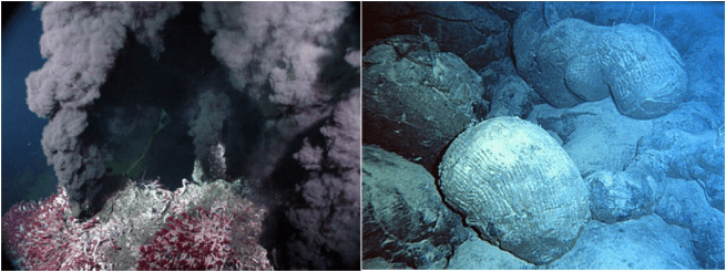 "Figure 1 – an example of the two habitats the researchers sampled: a hydrothermal vent community (right) and the basalt rock surrounding (left). The black ""smoke"" comes from the high concentration of metals in the water, like iron and manganese, that precipitate out of the superheated water once they hit the cold ocean bottom water. The red and white tubes are tubeworms that live only on hydrothermal vents. (Source: Wikimedia Commons)"