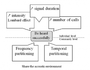Fig. 3: Strategies for being heard successfully. Above the dashed line are effective strategies at the individual level, below the dashed line are strategies at the community level.