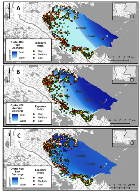 Fig. 4: Shoreline and oyster suitability maps. Points show exposure levels. High and medium exposure sites are where restoration is needed most to minimize erosion. The tone of blue indicates habitat suitability for oysters (dark blue = more suitable). The three maps show different levels of river discharge: A) high, B) low, and C) average. The ideal placement of oyster reefs to have the greatest impact on shoreline erosion would be where exposure is high (green points) and the habitat is most suitable (dark blue). Source: La Peyre et al. 2015. https://doi.org/10.7717/peerj.1317