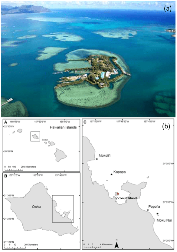 Figure 2. a) Coconut Island in Kanehoe Bay, Hawaii is home to the Hawaiian Institute of Marine Biology which served as the research base for this work (Image from https://www.hawaii.edu/himb/). b) Map of study sites. (Figure 1 in the paper.)