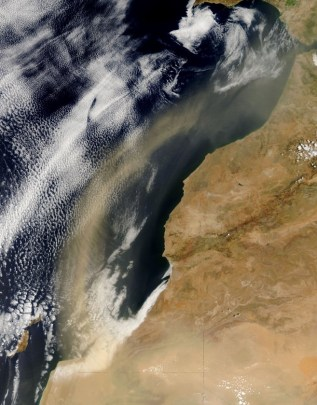 Dust blowing off the Sahara over the Atlantic Ocean (NASA)