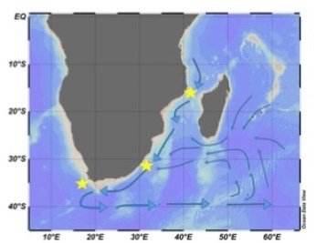 This map shows the path of the Agulhas current with blue arrows. The sites we are studying are marked with yellow stars.