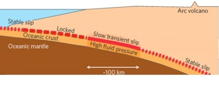 Figure 2: The cross section view of a subduction zone with the transition zone (or slow transient slip zone) in the middle of the subduction zone. (Peng, Gomberg 2010)