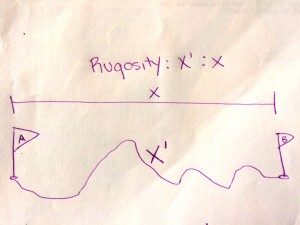 Figure 1: Rugosity is the ratio between actual distance (X') and the linear distance (X).