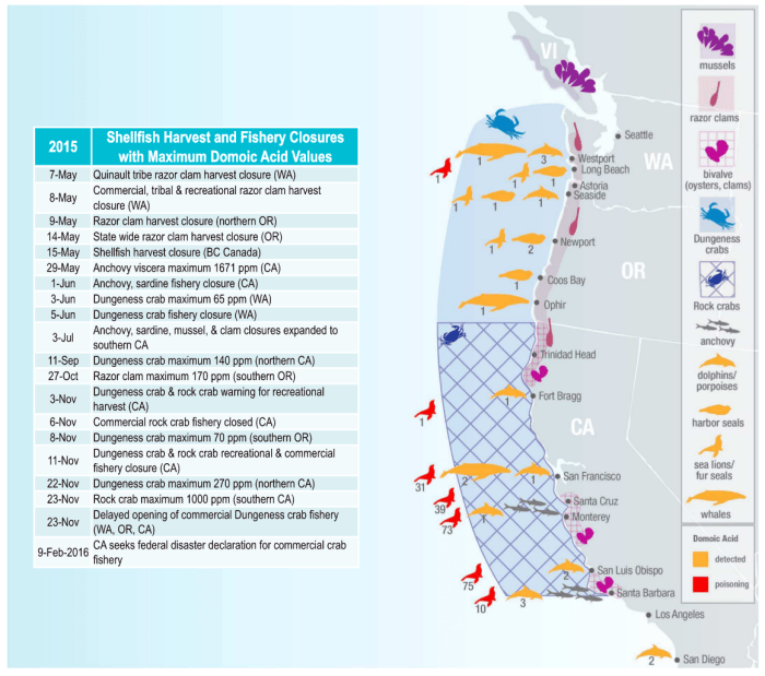 Map and timeline of fishery closures caused by high levels of domoic acid (Figure 1 in the paper.)
