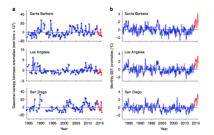Fig. 6: At three sites off the southern California coast, anomalies in kelp biomass are variable (a), with no clear impact of warmer years (red dots). At the same sites, temperature anomalies were found in Blob years (b).