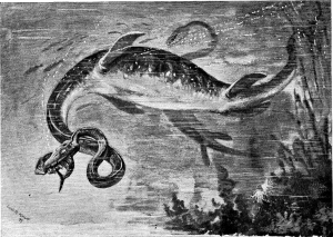 An anatomically incorrect sketch of an elasmosaurian plesiosaur. Sketched by Charles Robert Knight, 1897.