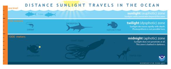 Les zones de l'océan dépendent de la quantité de lumière solaire qui atteint leur profondeur. Crédit: NOAA