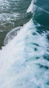 surfeur attrape la vague