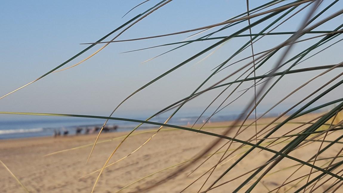 zeeland_nordsee-urlaub_reise-blog_frankfurt_oceanblue-style_unterkunft_augustinus