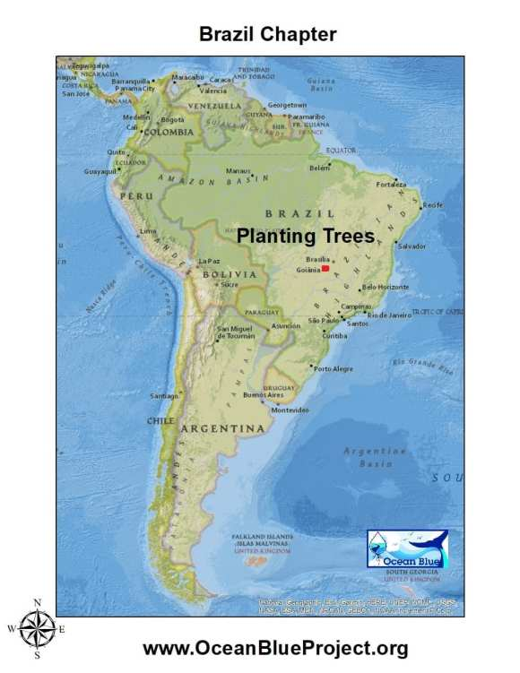 Map of area Ocean Blue Restores Brazilian Habitat by planting trees.
