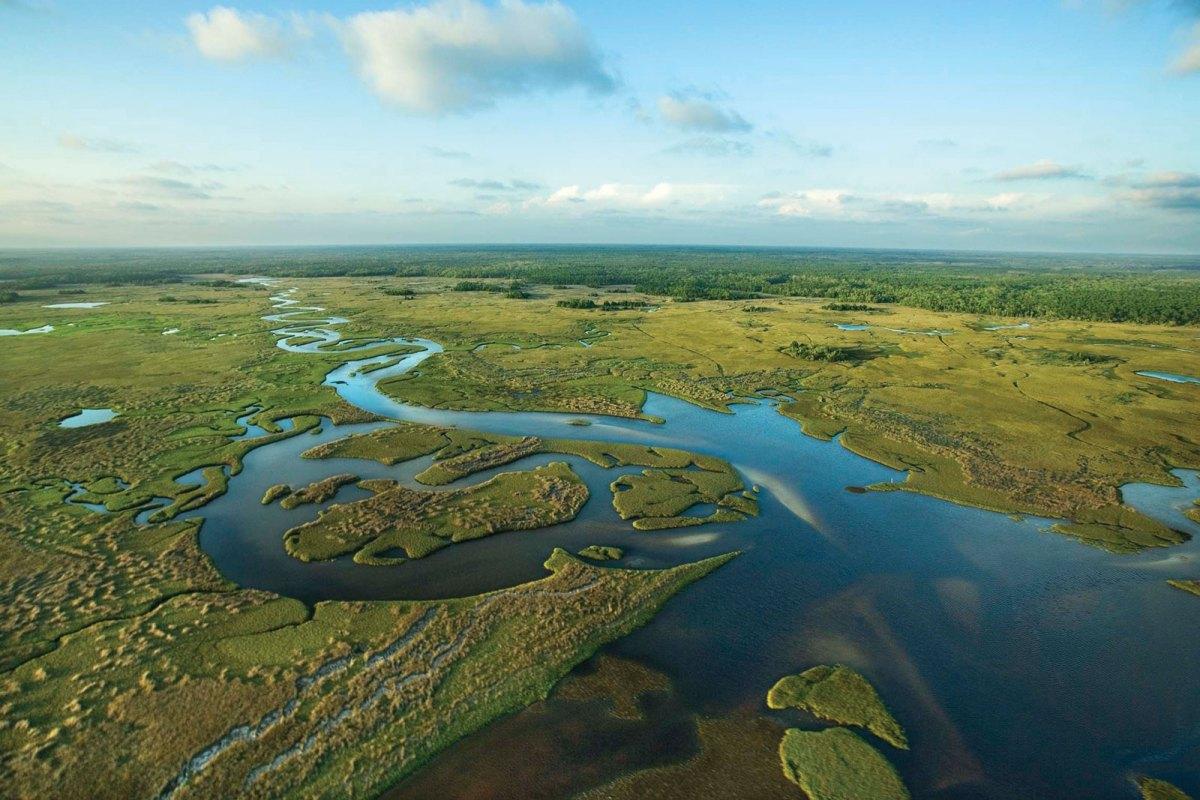 Everglades-National-Park-Florida.jpg