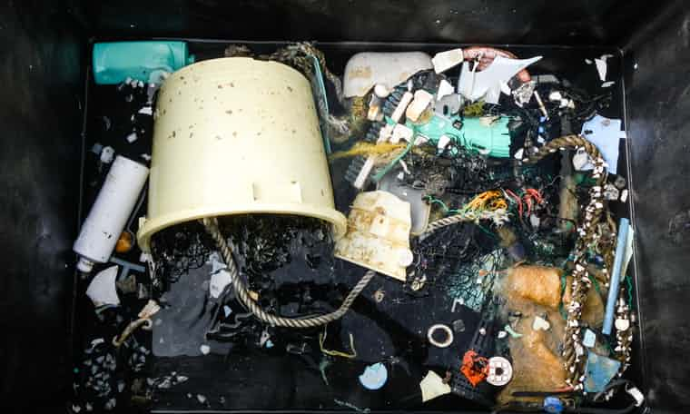 Samples collected from the Great Pacific Garbage Patch. Photo: The Ocean Cleanup