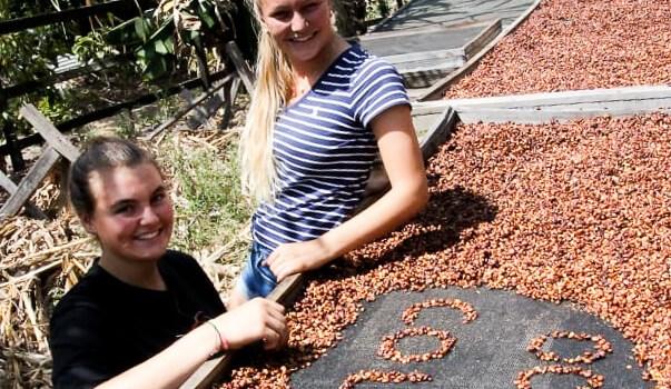Unsere Schüler und Schülerinnen sortieren Kaffee